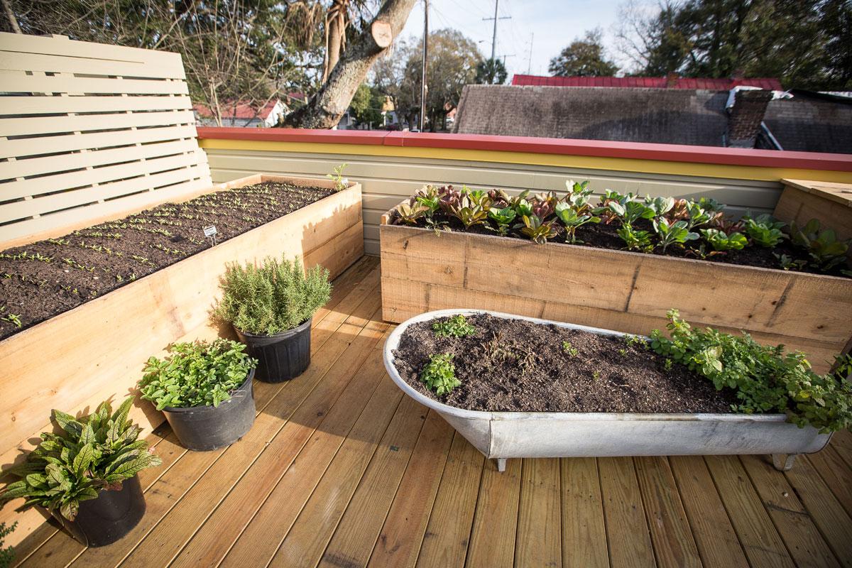 Rooftop-Garden004